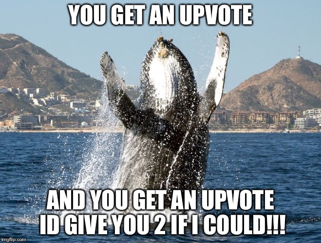 Happy Whale | YOU GET AN UPVOTE AND YOU GET AN UPVOTE ID GIVE YOU 2 IF I COULD!!! | image tagged in happy whale | made w/ Imgflip meme maker
