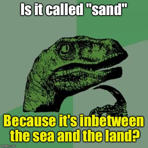 "Philosoraptor Meme | Is it called ""sand"" Because it's inbetween the sea and the land? 