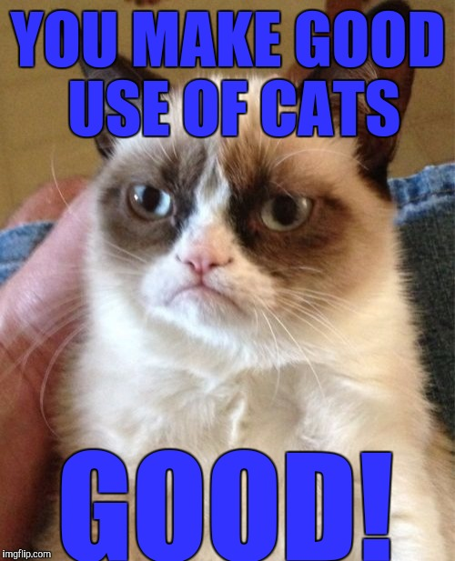 Grumpy Cat Meme | YOU MAKE GOOD USE OF CATS GOOD! | image tagged in memes,grumpy cat | made w/ Imgflip meme maker