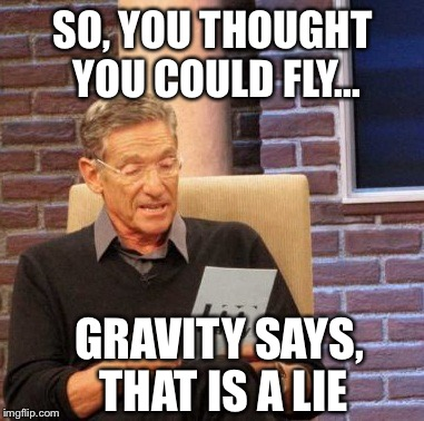 Maury Lie Detector Meme | SO, YOU THOUGHT YOU COULD FLY... GRAVITY SAYS, THAT IS A LIE | image tagged in memes,maury lie detector | made w/ Imgflip meme maker