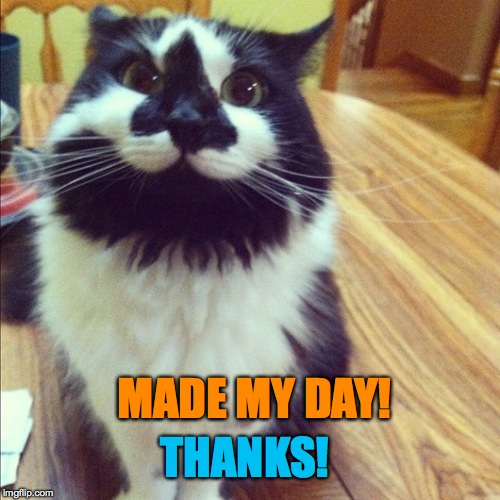 MADE MY DAY! THANKS! | made w/ Imgflip meme maker