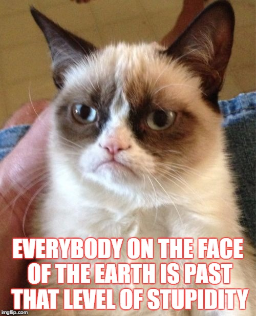 Grumpy Cat Meme | EVERYBODY ON THE FACE OF THE EARTH IS PAST THAT LEVEL OF STUPIDITY | image tagged in memes,grumpy cat | made w/ Imgflip meme maker