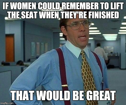 You lift it when you're done and I'll drop it when I'm done | IF WOMEN COULD REMEMBER TO LIFT THE SEAT WHEN THEY'RE FINISHED THAT WOULD BE GREAT | image tagged in memes,that would be great,funny,restrooms | made w/ Imgflip meme maker