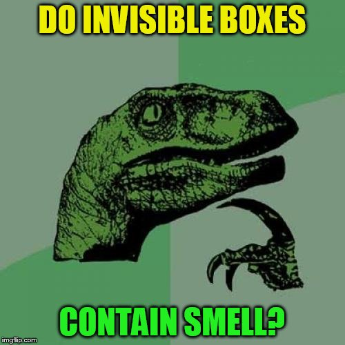 Philosoraptor Meme | DO INVISIBLE BOXES CONTAIN SMELL? | image tagged in memes,philosoraptor | made w/ Imgflip meme maker