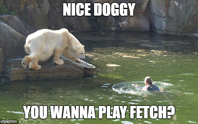 NICE DOGGY YOU WANNA PLAY FETCH? | made w/ Imgflip meme maker