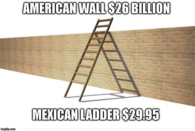 AMERICAN WALL $26 BILLION; MEXICAN LADDER $29.95 | image tagged in build a wall | made w/ Imgflip meme maker