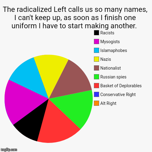 The radicalized Left calls us so many names, I can't keep up, as soon as I finish one uniform I have to start making another.  | Alt Right,  | image tagged in funny,pie charts | made w/ Imgflip pie chart maker