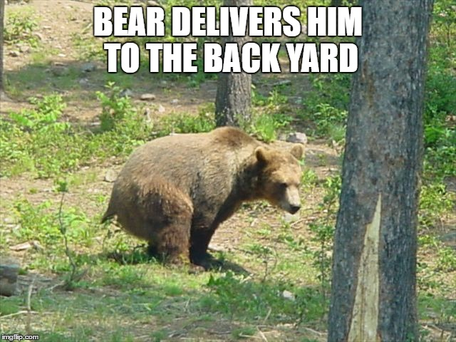 BEAR DELIVERS HIM TO THE BACK YARD | made w/ Imgflip meme maker