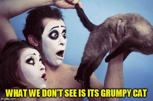 WHAT WE DON'T SEE IS ITS GRUMPY CAT | made w/ Imgflip meme maker