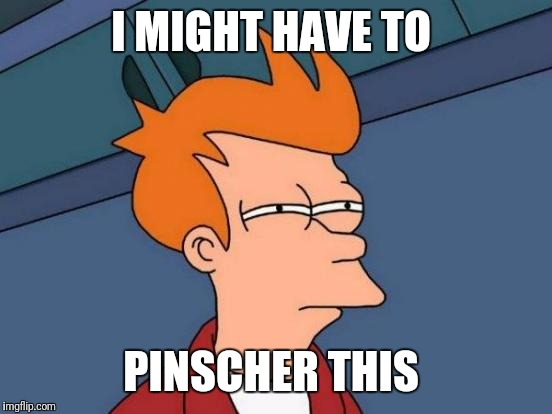 Futurama Fry Meme | I MIGHT HAVE TO PINSCHER THIS | image tagged in memes,futurama fry | made w/ Imgflip meme maker