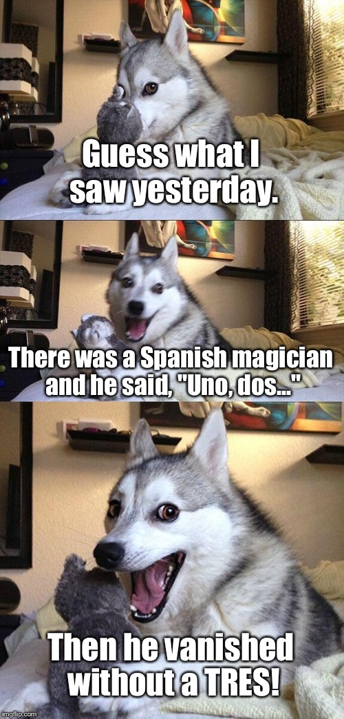 "Bad Pun Dog Meme | Guess what I saw yesterday. There was a Spanish magician and he said, ""Uno, dos..."" Then he vanished without a TRES! 