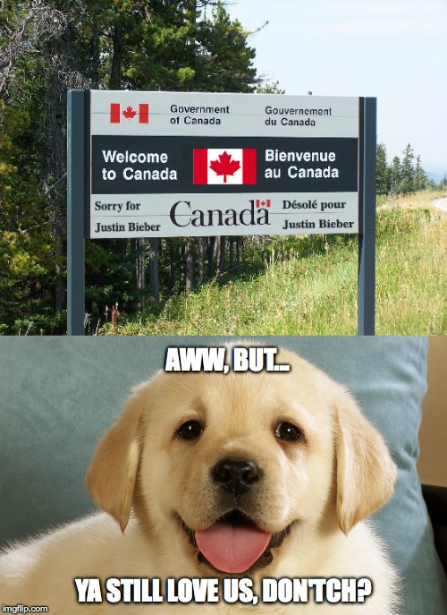 Apology from Canada | AWW, BUT... YA STILL LOVE US, DON'TCH? | image tagged in but we're still loveable | made w/ Imgflip meme maker