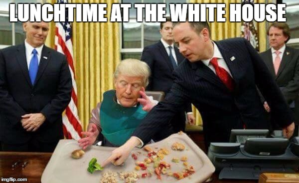 LUNCHTIME AT THE WHITE HOUSE | image tagged in funny trump meme,resist,resistance,baby trump,impeach trump | made w/ Imgflip meme maker