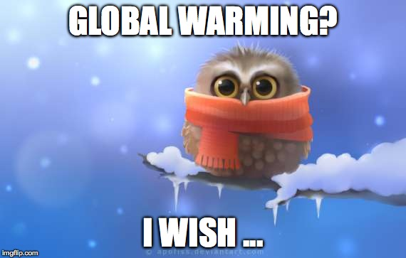 Minus 20 right now..March 5/17 | GLOBAL WARMING? I WISH ... | image tagged in this is ridiculous | made w/ Imgflip meme maker