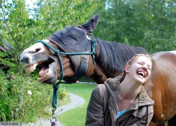 Laughing Horse | . | image tagged in laughing horse | made w/ Imgflip meme maker