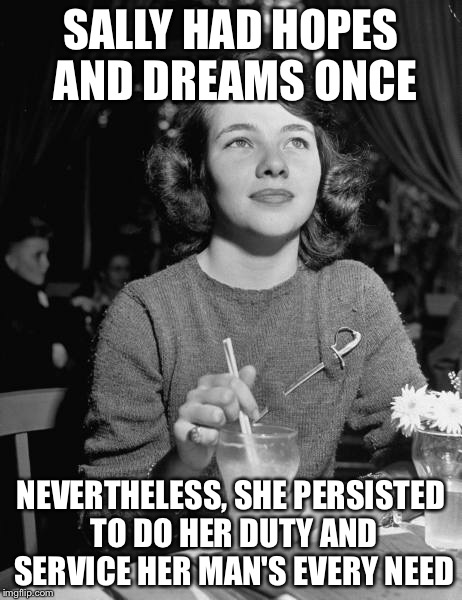 Nevertheless she persisted | SALLY HAD HOPES AND DREAMS ONCE NEVERTHELESS, SHE PERSISTED TO DO HER DUTY AND SERVICE HER MAN'S EVERY NEED | image tagged in nevertheless she persisted | made w/ Imgflip meme maker