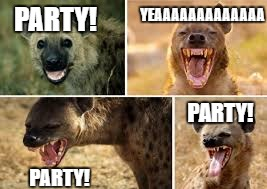party hyenas | PARTY! PARTY! PARTY! YEAAAAAAAAAAAAA | image tagged in hyena | made w/ Imgflip meme maker