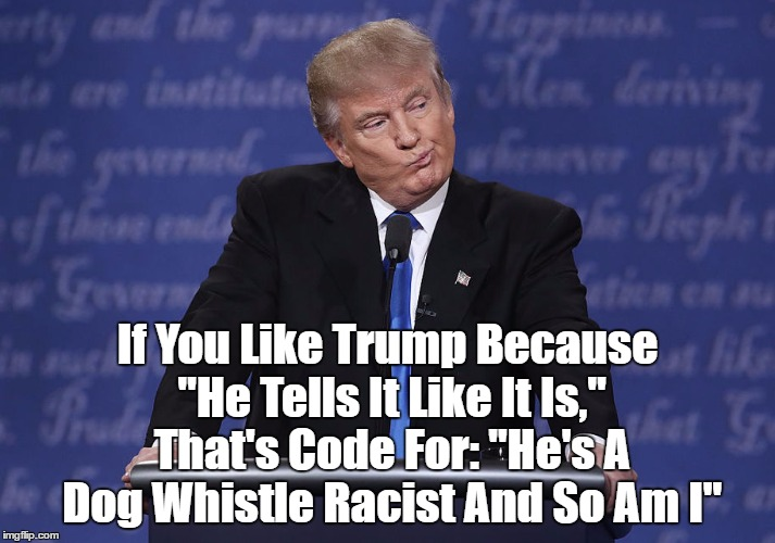 "If You Like Trump Because ""He Tells It Like It Is,"" That's Code For: ""He's A Dog Whistle Racist And So Am I"" 
