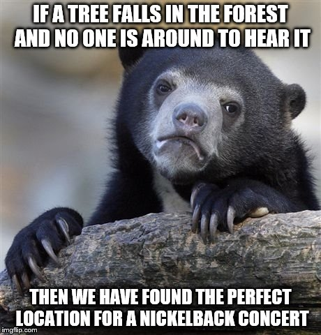 Confession Bear Meme | IF A TREE FALLS IN THE FOREST AND NO ONE IS AROUND TO HEAR IT THEN WE HAVE FOUND THE PERFECT LOCATION FOR A NICKELBACK CONCERT | image tagged in memes,confession bear | made w/ Imgflip meme maker