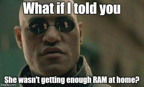 Matrix Morpheus Meme | What if I told you She wasn't getting enough RAM at home? | image tagged in memes,matrix morpheus | made w/ Imgflip meme maker