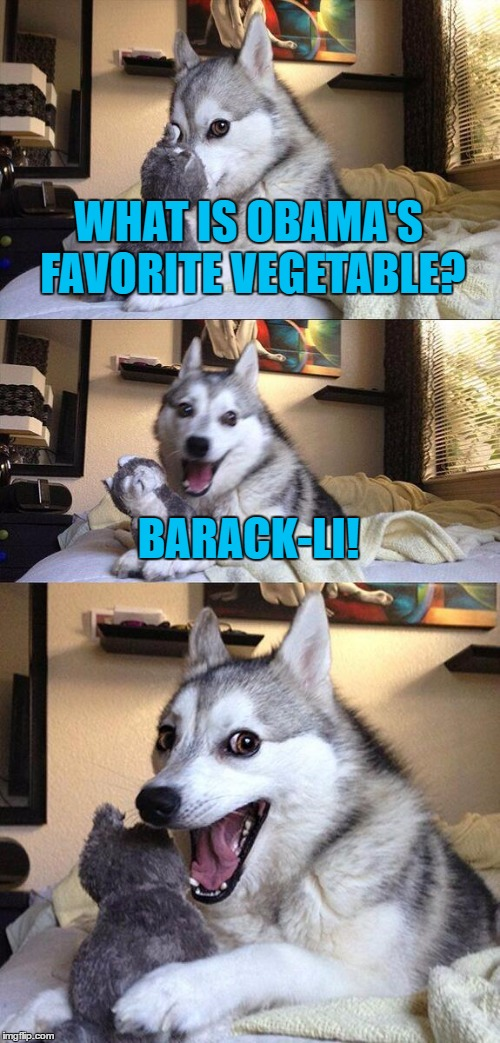 Obama loves veggies. | WHAT IS OBAMA'S FAVORITE VEGETABLE? BARACK-LI! | image tagged in memes,politics,bad pun dog,obama,funny,political meme | made w/ Imgflip meme maker
