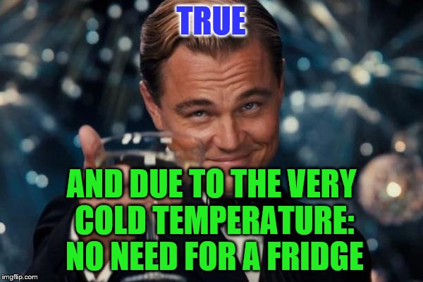 Leonardo Dicaprio Cheers Meme | TRUE AND DUE TO THE VERY COLD TEMPERATURE: NO NEED FOR A FRIDGE | image tagged in memes,leonardo dicaprio cheers | made w/ Imgflip meme maker