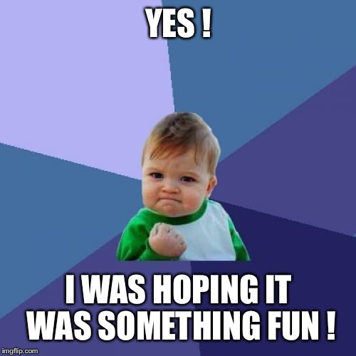 Success Kid Meme | YES ! I WAS HOPING IT WAS SOMETHING FUN ! | image tagged in memes,success kid | made w/ Imgflip meme maker