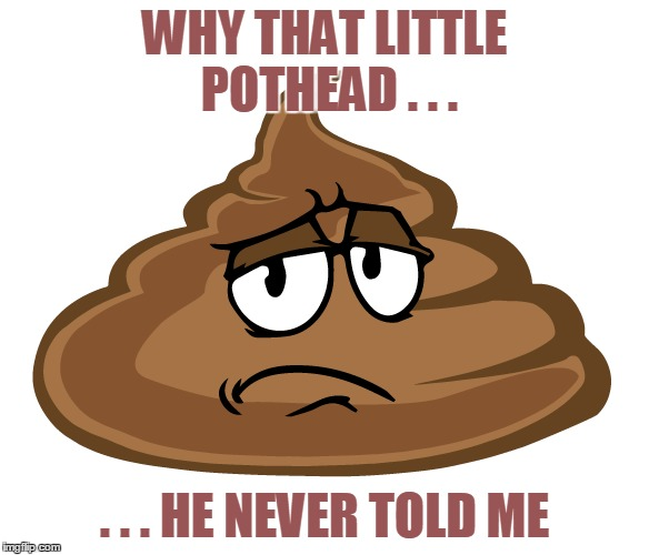 WHY THAT LITTLE POTHEAD . . . . . . HE NEVER TOLD ME | made w/ Imgflip meme maker