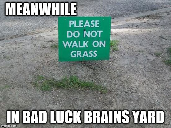 MEANWHILE IN BAD LUCK BRAINS YARD | made w/ Imgflip meme maker