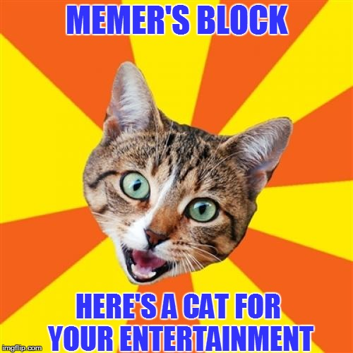 If in Doubt, Post a Cat | MEMER'S BLOCK HERE'S A CAT FOR YOUR ENTERTAINMENT | image tagged in memes,bad advice cat | made w/ Imgflip meme maker
