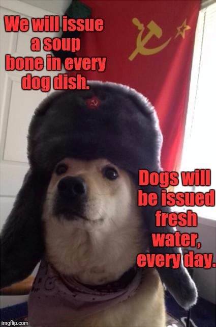 communist dog | We will issue a soup bone in every dog dish. Dogs will be issued fresh water, every day. | image tagged in communist dog | made w/ Imgflip meme maker