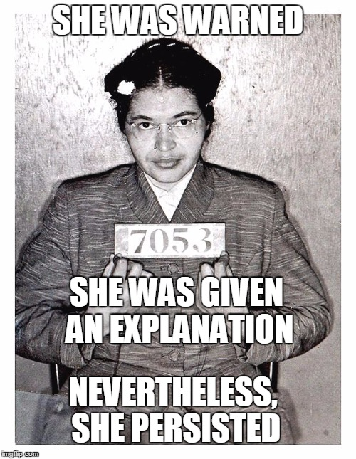 "Rosa Parks ""She Persisted"" 