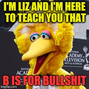 B IS FOR BULLSHIT |  I'M LIZ AND I'M HERE TO TEACH YOU THAT; B IS FOR BULLSHIT | image tagged in memes,big bird,breaking news,women rights | made w/ Imgflip meme maker