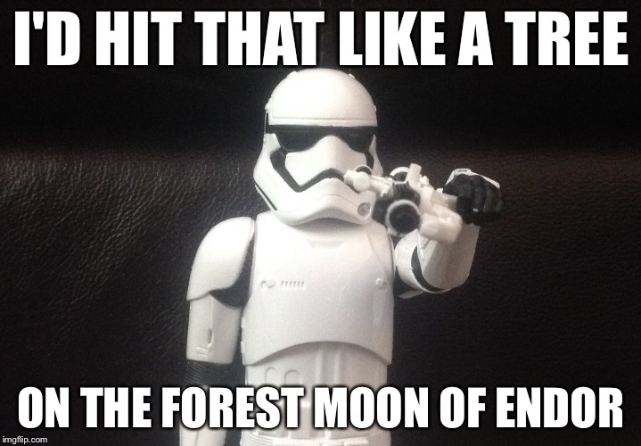 Storm Trooper Takes Aim | I'D HIT THAT LIKE A TREE ON THE FOREST MOON OF ENDOR | image tagged in storm trooper takes aim | made w/ Imgflip meme maker