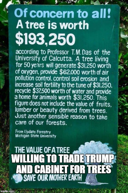 WILLING TO TRADE TRUMP AND CABINET FOR TREES | image tagged in air | made w/ Imgflip meme maker