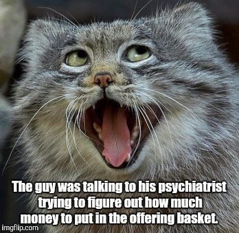 Cat | The guy was talking to his psychiatrist trying to figure out how much money to put in the offering basket. | image tagged in cat | made w/ Imgflip meme maker