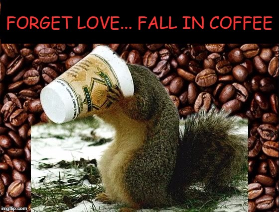 Probably easier as a memer!! | FORGET LOVE... FALL IN COFFEE | image tagged in meme,funny,coffee,love,memer,coffee addict | made w/ Imgflip meme maker