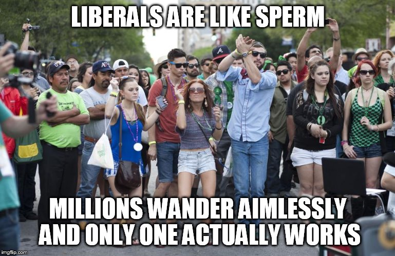 Lazy Libs | LIBERALS ARE LIKE SPERM MILLIONS WANDER AIMLESSLY AND ONLY ONE ACTUALLY WORKS | image tagged in stupid liberals,liberal millenials | made w/ Imgflip meme maker