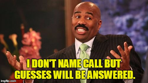Steve Harvey Meme | I DON'T NAME CALL BUT GUESSES WILL BE ANSWERED. | image tagged in memes,steve harvey | made w/ Imgflip meme maker