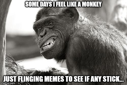 Yes, some of them stink... | SOME DAYS I FEEL LIKE A MONKEY JUST FLINGING MEMES TO SEE IF ANY STICK... | image tagged in flinging,monkey | made w/ Imgflip meme maker