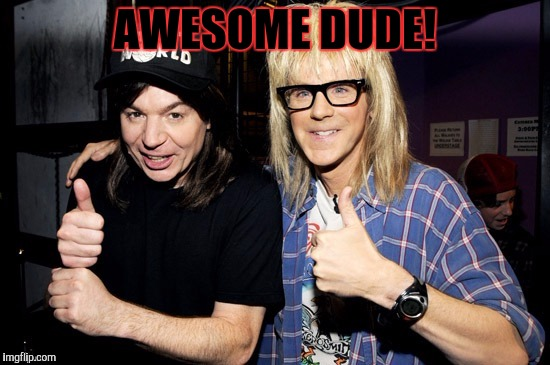 Wayne's world | AWESOME DUDE! | image tagged in wayne's world | made w/ Imgflip meme maker
