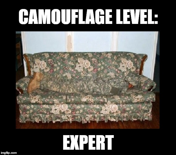 How to avoid mowing the lawn... | CAMOUFLAGE LEVEL: EXPERT | image tagged in memes,funny,camouflage,camo,hide and seek,imgflip | made w/ Imgflip meme maker