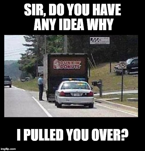 ROFL | SIR, DO YOU HAVE ANY IDEA WHY I PULLED YOU OVER? | image tagged in memes,funny,cops and donuts,rofl,imgflip,puns | made w/ Imgflip meme maker