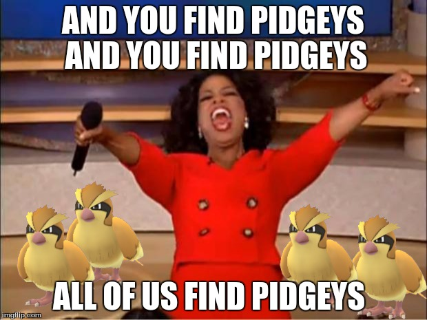 pokemon go  | AND YOU FIND PIDGEYS AND YOU FIND PIDGEYS ALL OF US FIND PIDGEYS | image tagged in memes,oprah you get a,pokemon go | made w/ Imgflip meme maker
