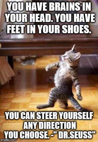 1jbb9h cool cat stroll memes imgflip