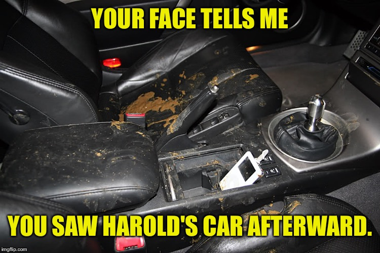 YOUR FACE TELLS ME YOU SAW HAROLD'S CAR AFTERWARD. | made w/ Imgflip meme maker