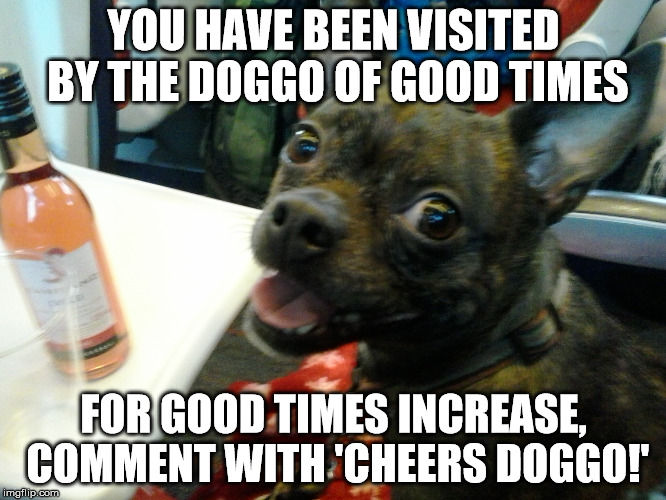 good times doggo |  YOU HAVE BEEN VISITED BY THE DOGGO OF GOOD TIMES; FOR GOOD TIMES INCREASE, COMMENT WITH 'CHEERS DOGGO!' | image tagged in doge,doggo,good times | made w/ Imgflip meme maker