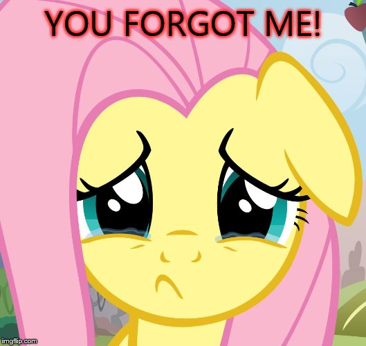 sad fluttershy | YOU FORGOT ME! | image tagged in sad fluttershy | made w/ Imgflip meme maker