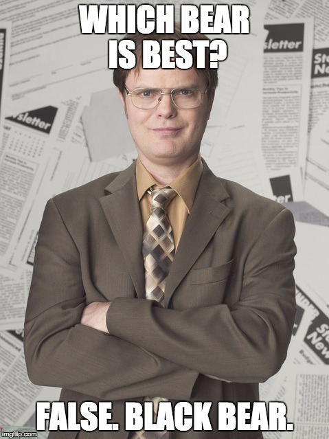 Dwight Schrute 2 | WHICH BEAR IS BEST? FALSE. BLACK BEAR. | image tagged in memes,dwight schrute 2 | made w/ Imgflip meme maker