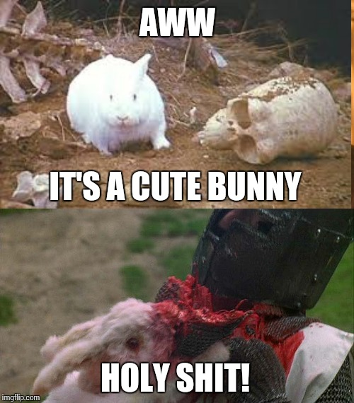 AWW IT'S A CUTE BUNNY HOLY SHIT! | made w/ Imgflip meme maker